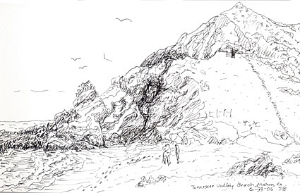 Beach at Tennessee Valley pen and ink