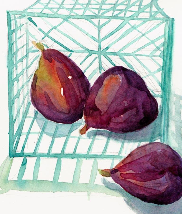 "Figs, Watercolor, 8x6"""