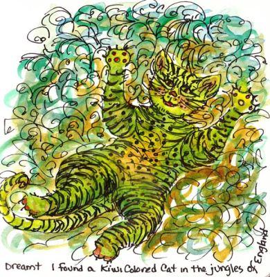 071219-Kiwi-Cat