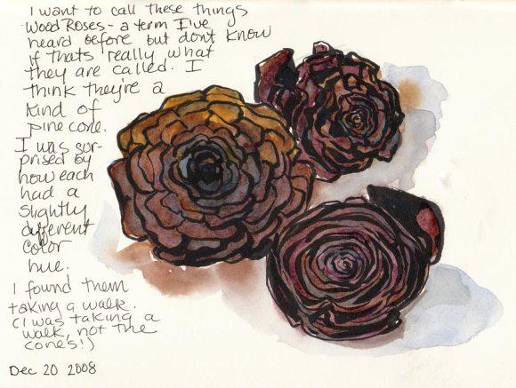 Wood Roses or Pine Cones? (ink & watercolor)