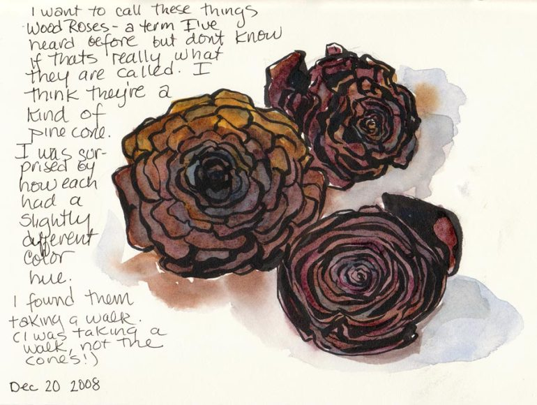 Wood Roses or Pine Cones? (ink & watercolor)