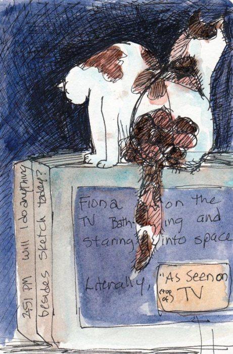 "Fiona ""As Seen on TV"" Evening"