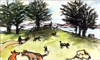 Dog-Park-1-071223-smaller