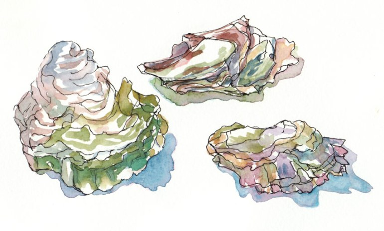 Oyster Shells painted in Gouache in large watercolor Moleskine
