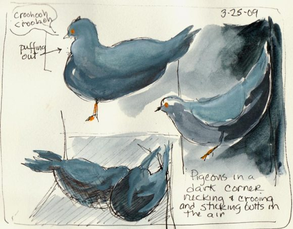 BART Station Pigeons, ink & gouache in sketchbook