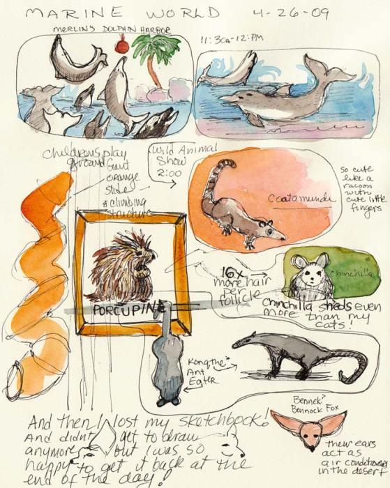 "Marine World Critters, ink & watercolor in 6x8"" sketchbook"