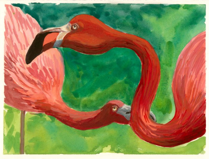 """Why Are Flamingoes Pink? Gouache on hot press paper, 5.5x7.5"""""""