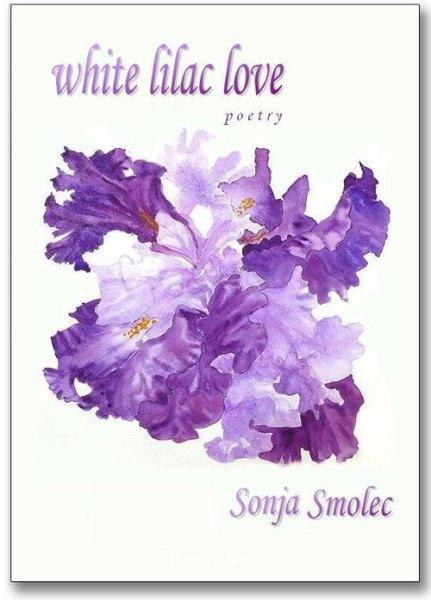 White Lilac Love Book Cover