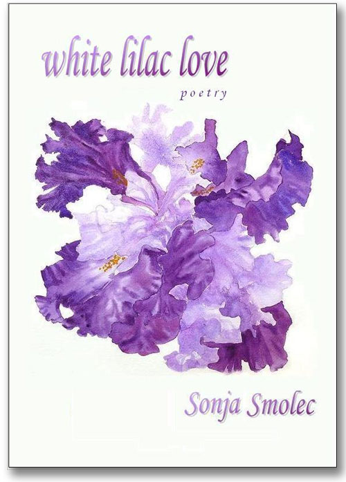 White Lilac Love Book Cover