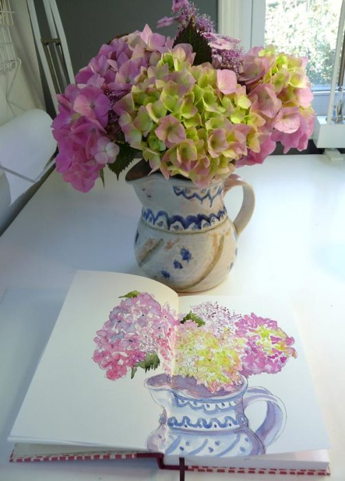 Hydrangeas and sketchbook