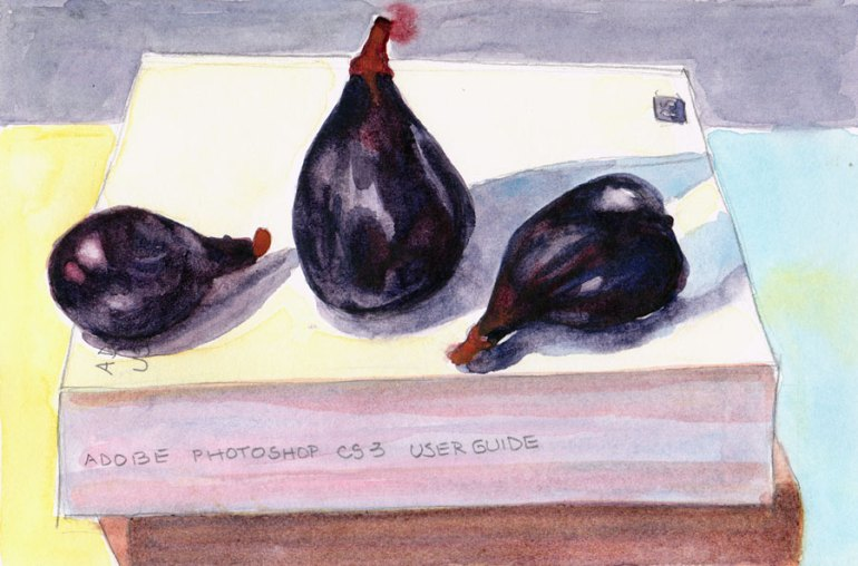 Figs on Photoshop Manual, Pencil and watercolor, 6x9