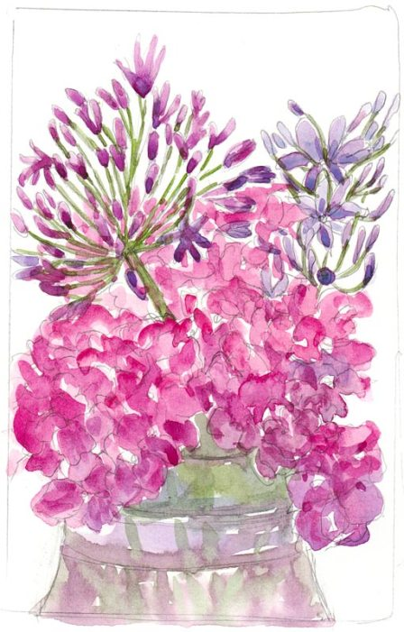 "Agapantha Fireworks over Hydrangeas, watercolor, 9x6"""