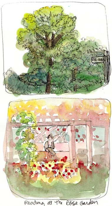 Berkeley Rose Garden views, Ink & watercolor