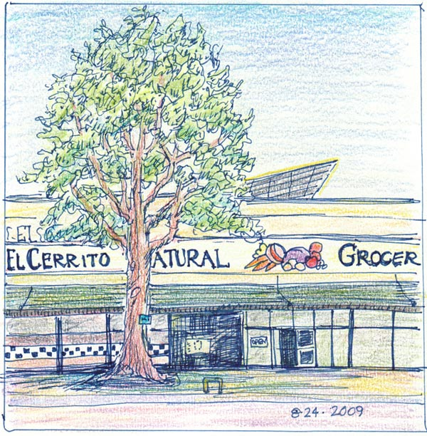 El Cerrito Natural Grocery, Copic cobalt multiliner & Polychromos colored pencils