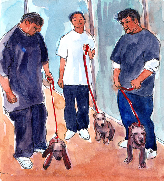 Tough Dudes and their Pitbulls, Ink and watercolor