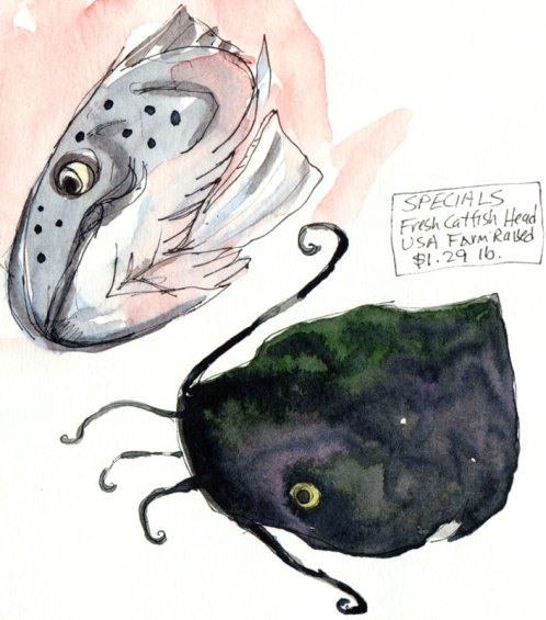 Salmon and Catfish Heads, ink and watercolor