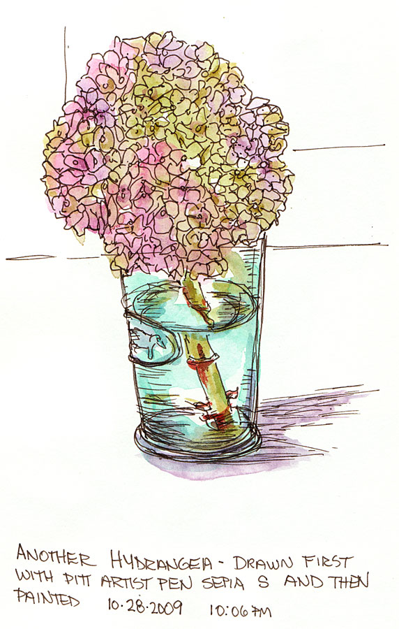 Hydrangea #3, ink and watercolor, 9x6""