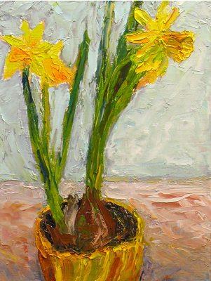 080126-DaffodilP1010787