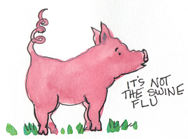 Not Swine Flu, Ink & gouache