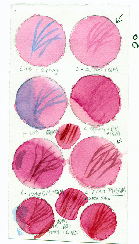 Orchid watercolor test page