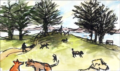 Dog-Park-1 - Copy