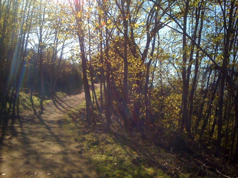 Nearby Hiking Trail