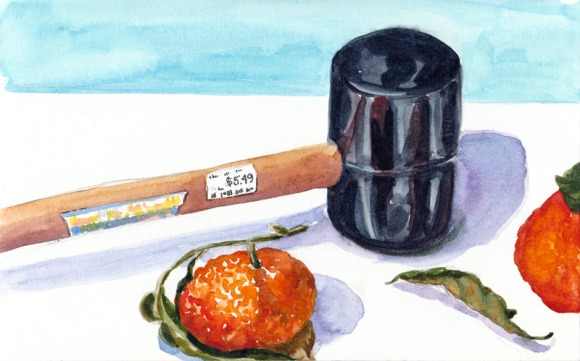 Mallet and Tangerines, watercolor & graphite