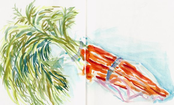 Carrots in cellophane, ink & watercolor
