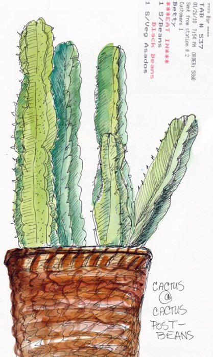 Cactus Basket, ink & watercolor