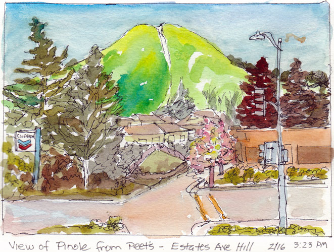 Pretty Pinole from Peets, Ink and Watercolor