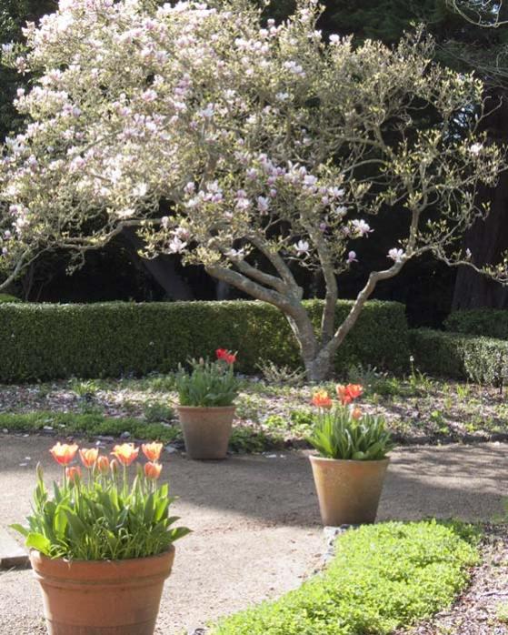 Photo at Blake Gardens