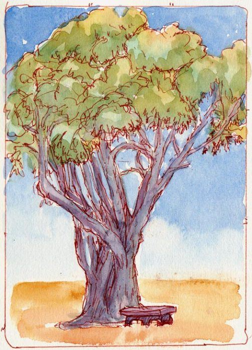 Tree at Dusk, ink & watercolor