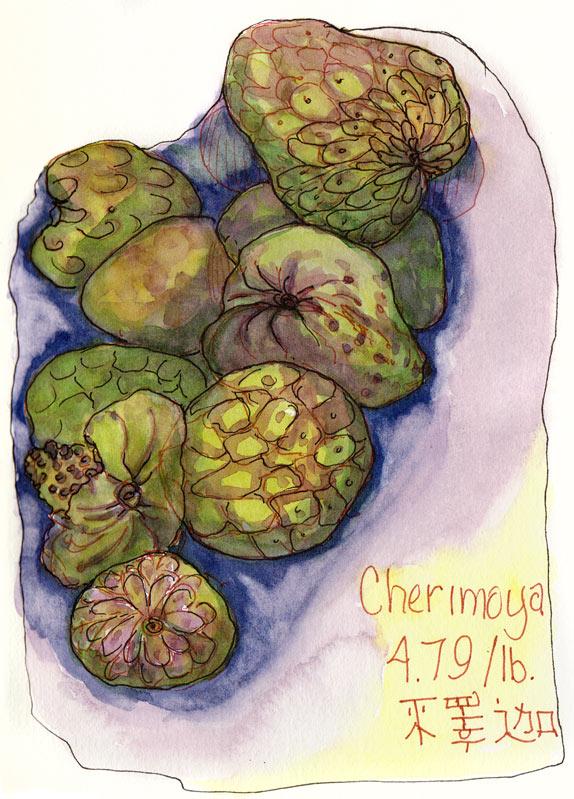 Cherimoya, ink & watercolor