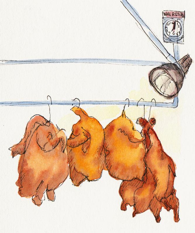 Chickens, Ducks, Bye-Bye Birdies