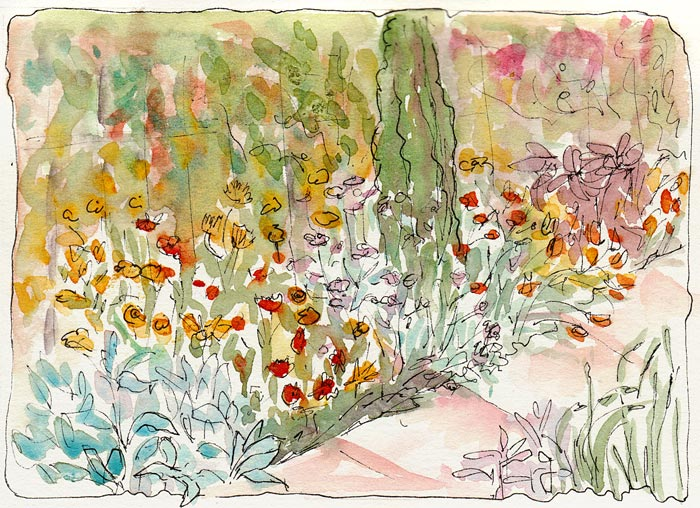 Garden path with cactus, ink & watercolor