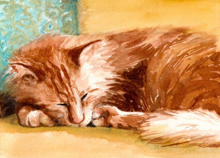 """Toby, Orange Maine Coon Cat, 6.5"""" x 8.5."""" Watercolor on paper. (SOLD)"""