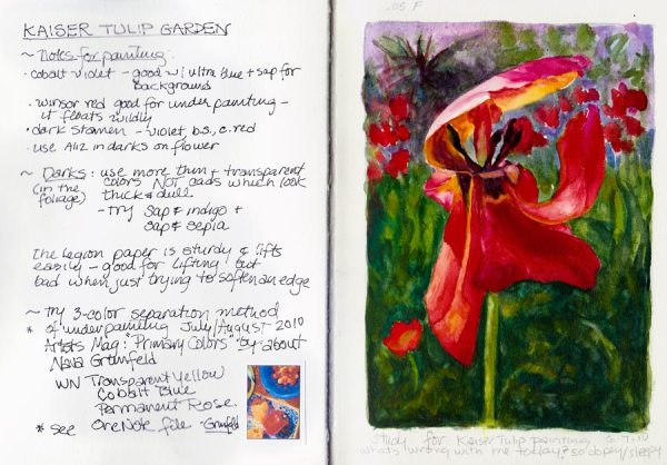 Tulip study and notes for painting, journal spread