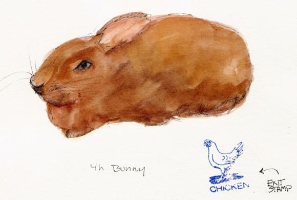 Bunny, ink & watercolor