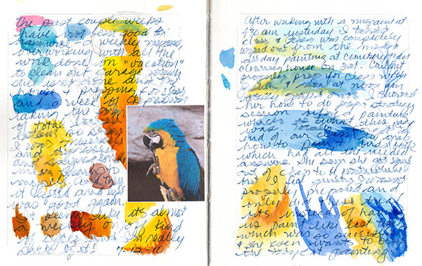 Journal parrot feather spread