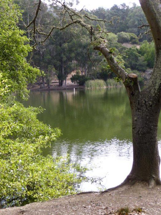 Lake Anza reference photo
