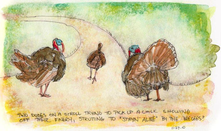 Stayin Alive' Turkey Walk