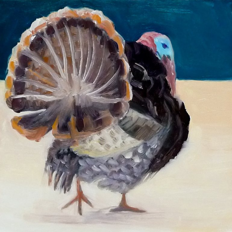 Turkey, oil on panel, 6x6""