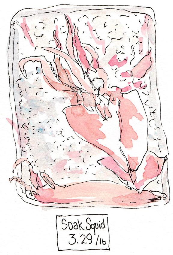 Soak Squid on Ice, ink & watercolor