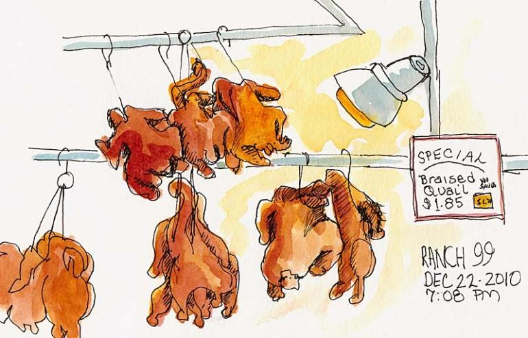 Hanging fowl, ink & watercolor