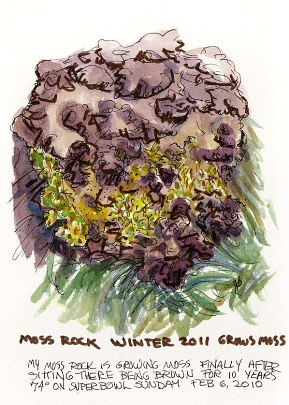 Moss Rock Grows Moss, ink, Pentel Brush Pen & watercolor