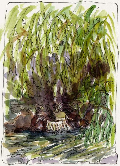 Weeping Willow and Pond, Ink & watercolor