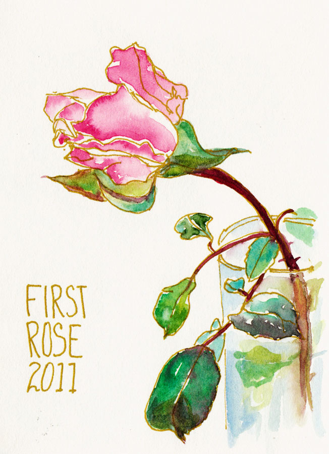 First Cut Rose, gold gel pen and watercolor