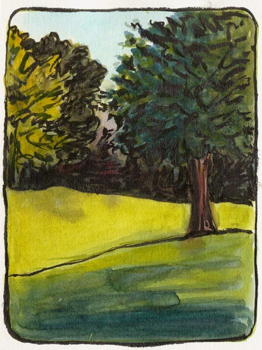 """Sunset View Cemetery Trees, ink & watercolor 7x5"""""""