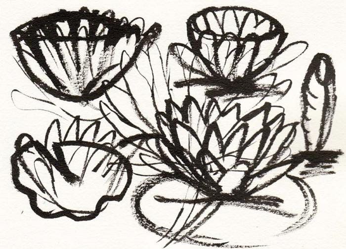Sorting out the shape of lily pads and flowers with Pentel Pocket  brush pen