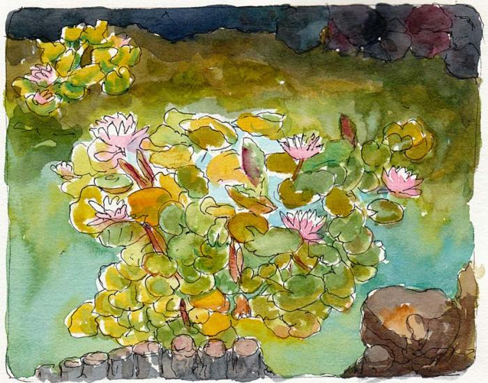 Sunset View Cemetery Lily Pond #2, ink & watercolor 5x7""